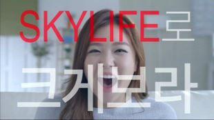 KT 스카이라이프