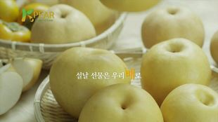 한국배연합회
