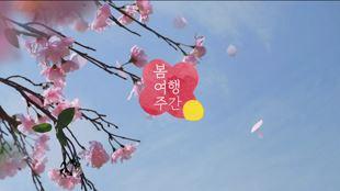 한국관광공사 봄 여행주간
